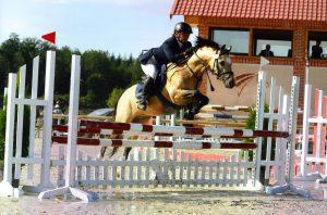 Macari - Sologn'Pony 2008