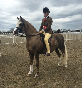 Penny Farthing Res Champ april 2016 1 red